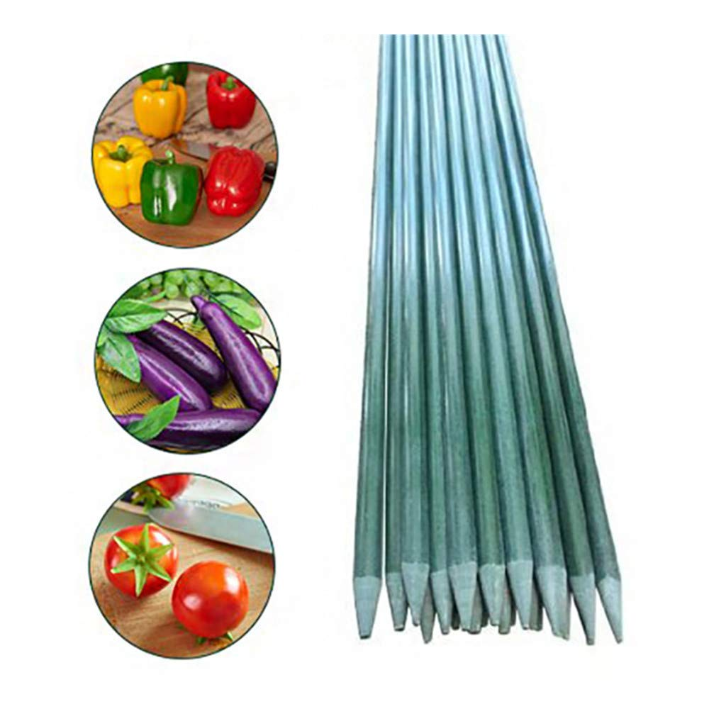 Eco.Fabric 2-Ft Fiberglass Garden Stakes,Tomato Stakes,Plant Stakes,Climbing Plants Supports Pole Dark Green 40pack
