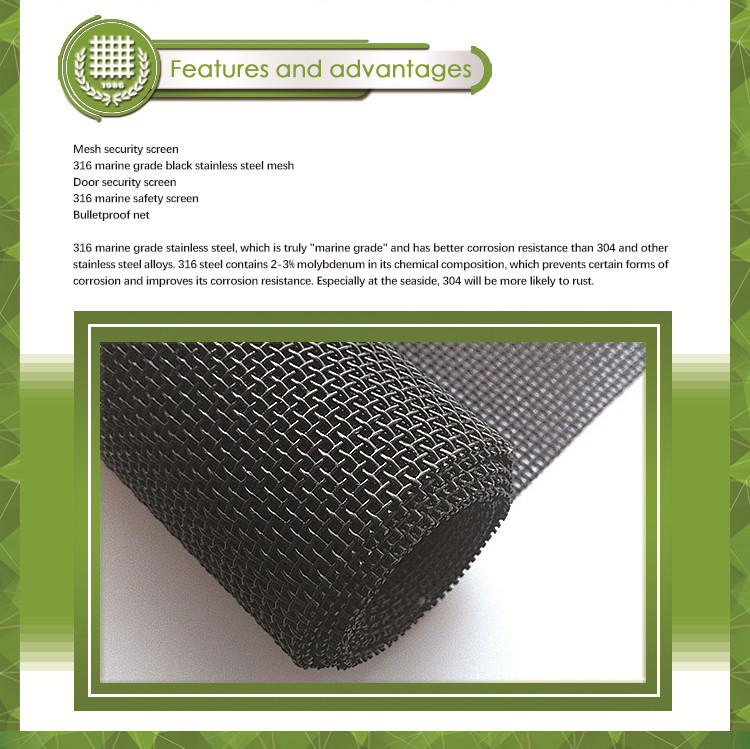 marine grade 10mesh 0.9mm stainless steel security window