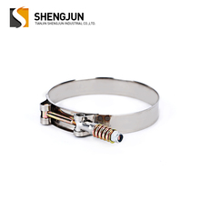 19mm bandwidth pipe repair mounting bracket tube 304ss spring loaded t bolt heavy duty hose clamp