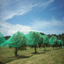HDPE Mono filament Bird Netting for agriculture
