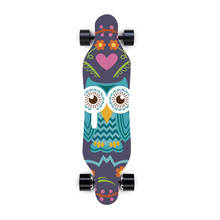 electric boards skateboards with boosted board longboard