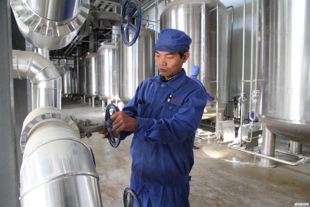 Brewing Kettle Mash Tun Amp Lauter Tun Home Brew Equipment