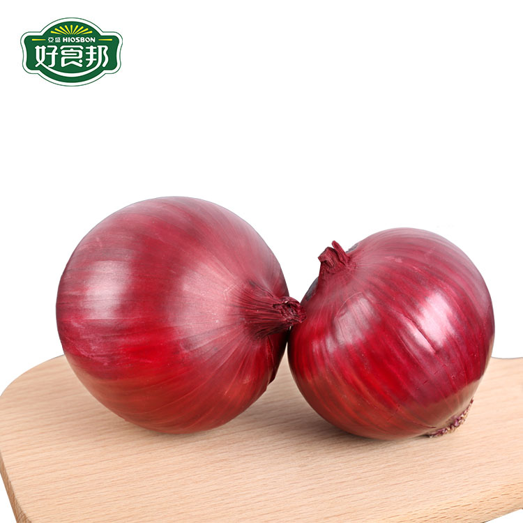 20kg bags bellary red onions
