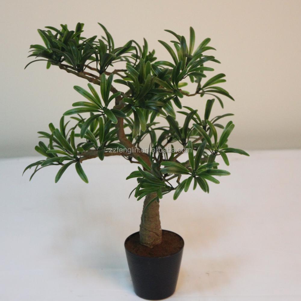 new item factory podocarpus artificial bonsai tree for indoor decoration