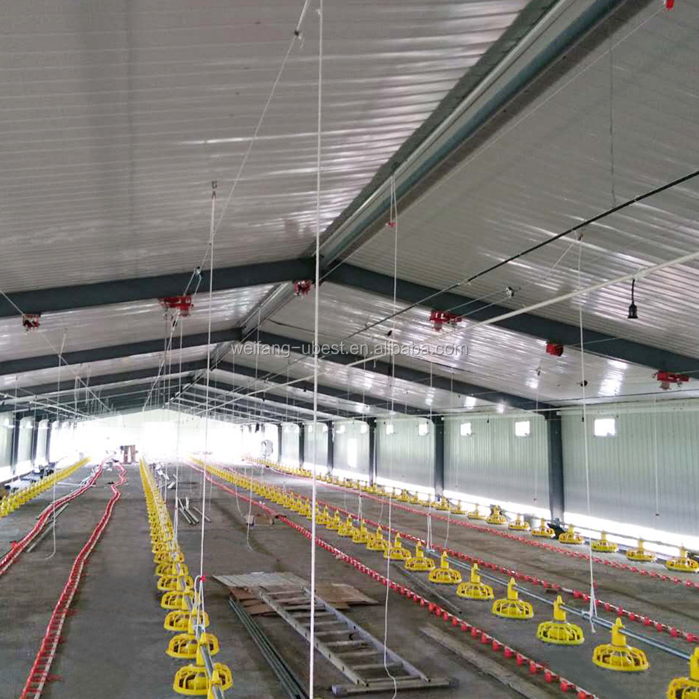 2018 Hot Sale Steel Structure Poultry Farm Project Proposal Pdf With Low  Cost - Buy Poultry Farm Project Proposal Pdf,Poultry Farm Project,Poultry