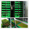 stainless steel container wheat sprouts cultivate machine for growing soya bean barley sprouts