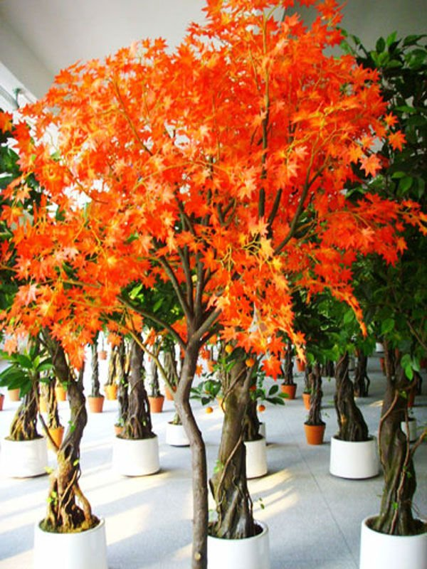 Completely new Artificial Maple Tree - Buy Artificial Tree,Decorative Maple Trees  XG41
