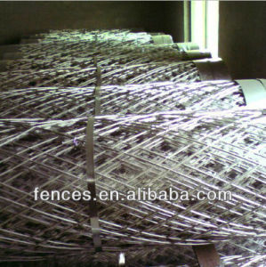 Hot Dipped Galvanized Razor Mesh