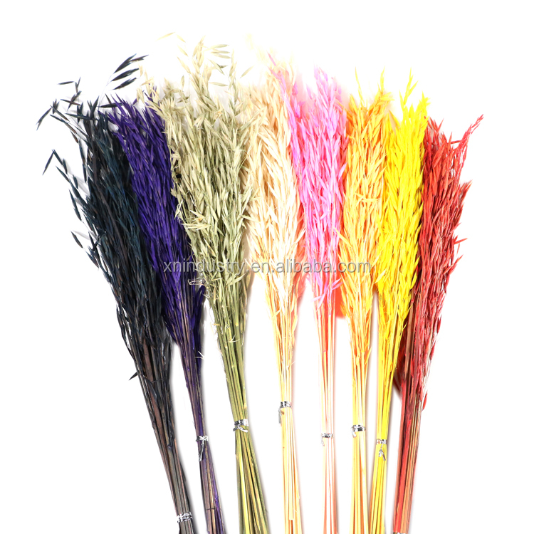 Wholesale Primitive Home Decor Oat Grass With Different Color Buy Primitive Home Decor Home Decor Flower Decoration Product On Alibaba Com