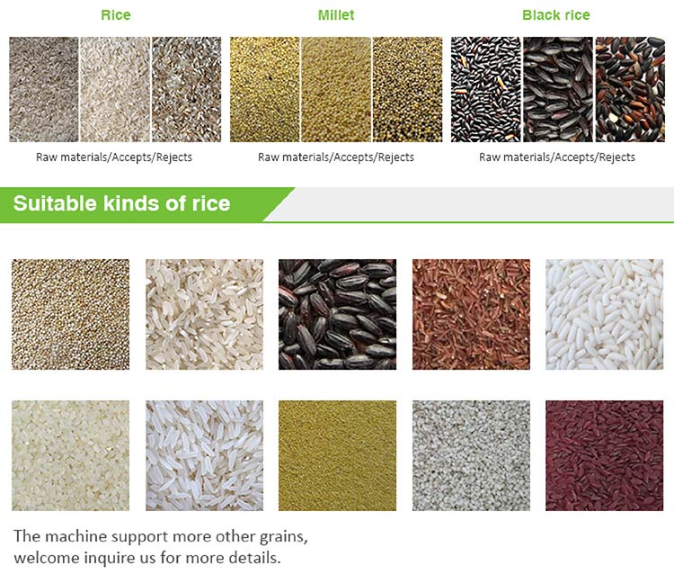 CCD Rice Color Sorter, Color Sorting Machine, Color Selector For Grain, Cereal, Wheat, Corn, Peanut, Beans,Seeds,Tea, Nuts