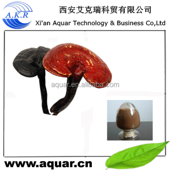 Reishi extract and Reishi powder for free sample