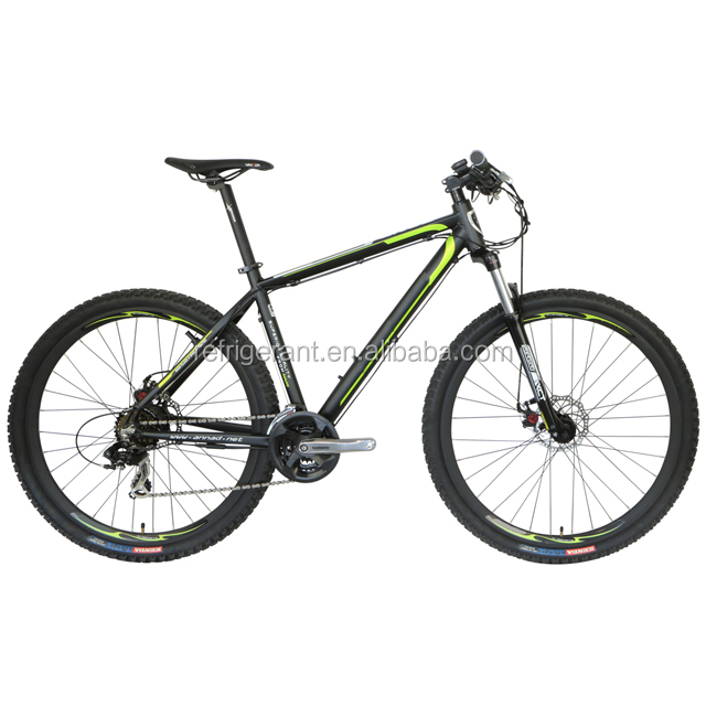 EN15194 EU OEM Super light Chinese mountain electric bike 250W mountain e bike
