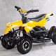 49CC Pocket Mini Racing ATV Quad Bike (A7-003)