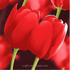 100% polyester tulip style printed & dyed fabric 220cm width 100gsm