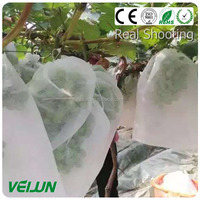 uv protection breathable babana covering Fruit covering nonwoven New Style Nonwoven Fabric