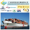 Sea freight shipping from China to Bandar Abbas, Iran
