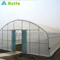 India Commercial Tunnel Dome Greenhouse for sale