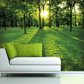 QZ186 Home Decoration Bamboo 3D Wallpaper Living Room Interior Decoration Forest  Wallpaper For Bed Room