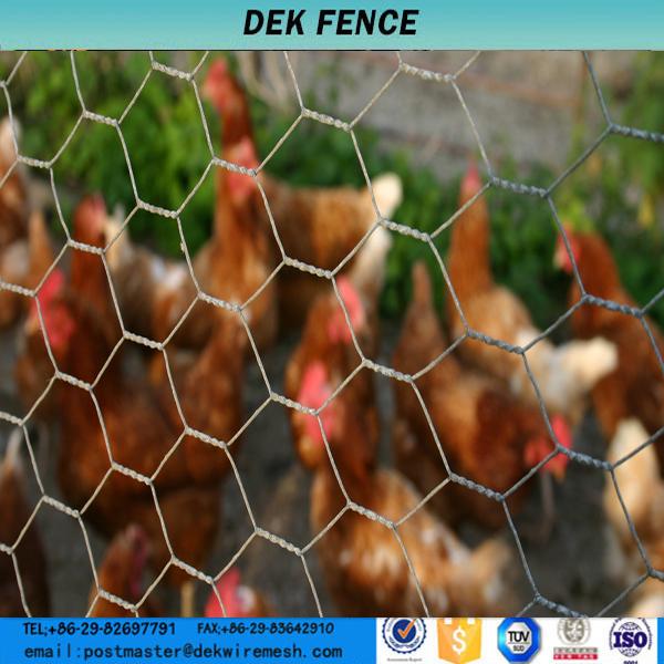 Finden Sie Hohe Qualität Chicken Draht Hause Depot Hersteller und ...