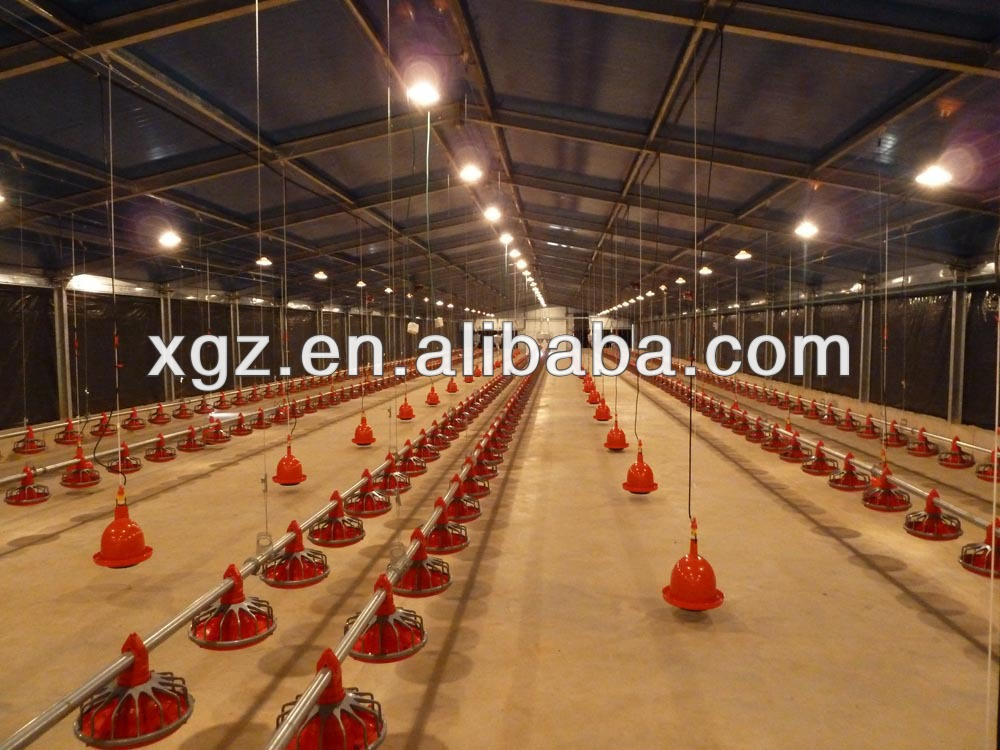 Egg layer poultry house design for chicken farm