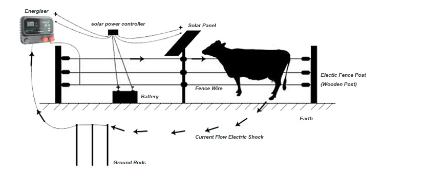 solar power electric fence energizer for goat cattle cow farm