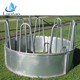 Farm using durable color cow cattle sheep horse bale ring feeder