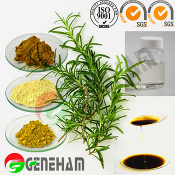 Rosemary Extract Food Preservative