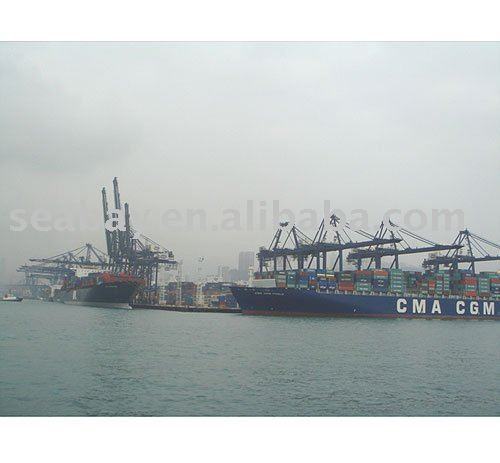Shenzhen Guangzhou sea freight to Mumbai India(Allen)