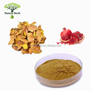 Hot Sale Water Soluble Pomegranate Peel P.E. 10:1 Powder