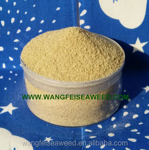 Best Price Bangladesh Market Textile Grade Sodium Alginate of Chemical Auxiliary Agent