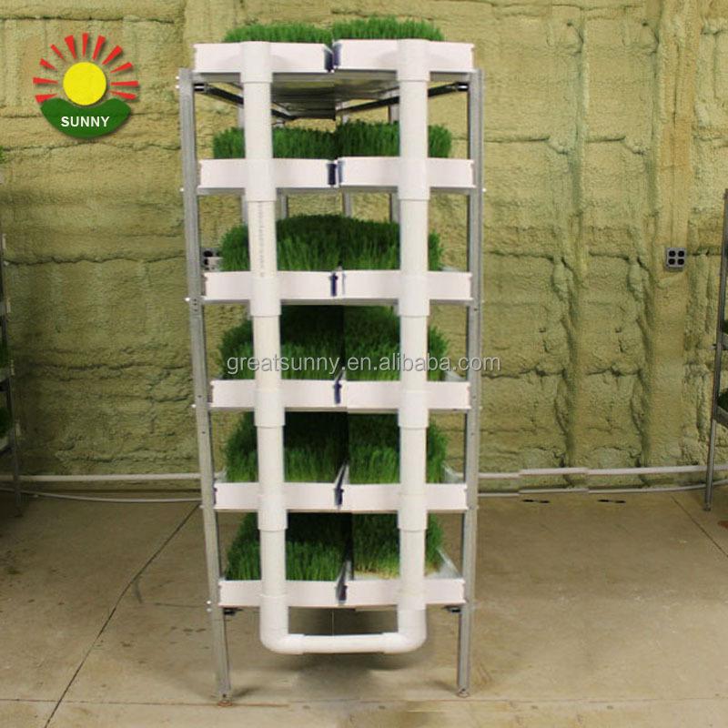 La culture hydroponique fourrage pour les animaux machine fourrage germination machine d 39 orge l - Chambre de culture hydroponique ...