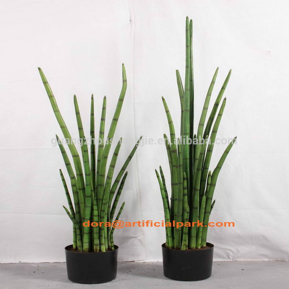 Sjh010669 rendere le piante artificiali piante ornamentali - Piante verdi da esterno ...
