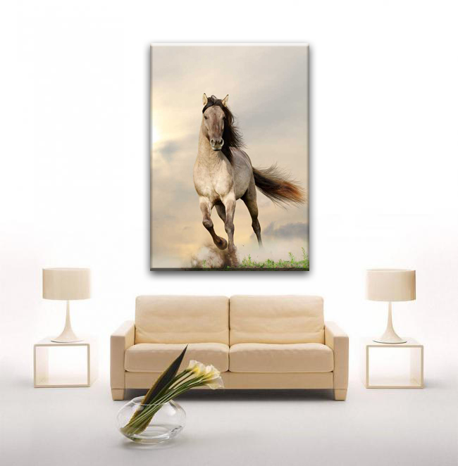 Home decorate white horse large wall canvas art painting for living room