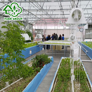 Agriculture Aquaponics Greenhouse for flowers for fish farming