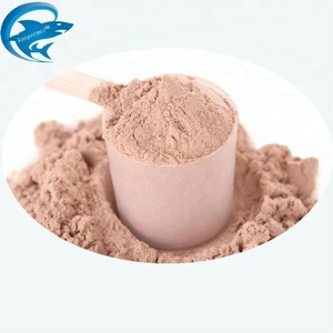 HALAL Chocolate Whey Protein Isolate Powder in Bulk