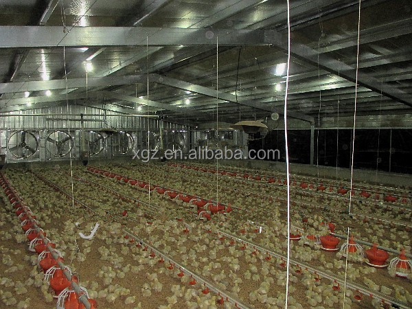 cheap china Steel Structural Egg Chicken Shed Farming Building