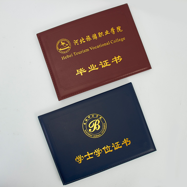 Hot Sale College Diploma expanding folder