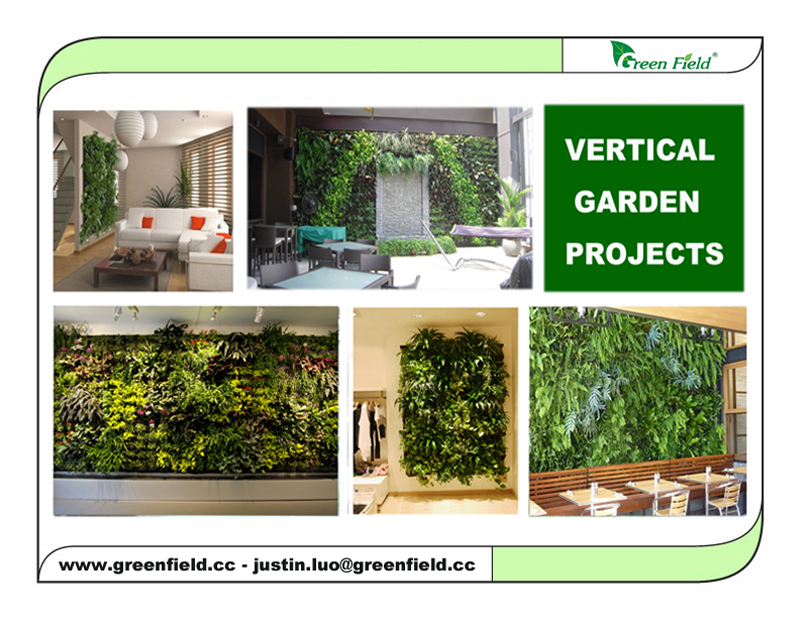 Green Field Drip Irrigation System For Vertical Garden