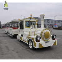 Cheap price amusement kiddie rides electric tourist railway train