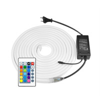 12 v 24v led neon flex 20mm