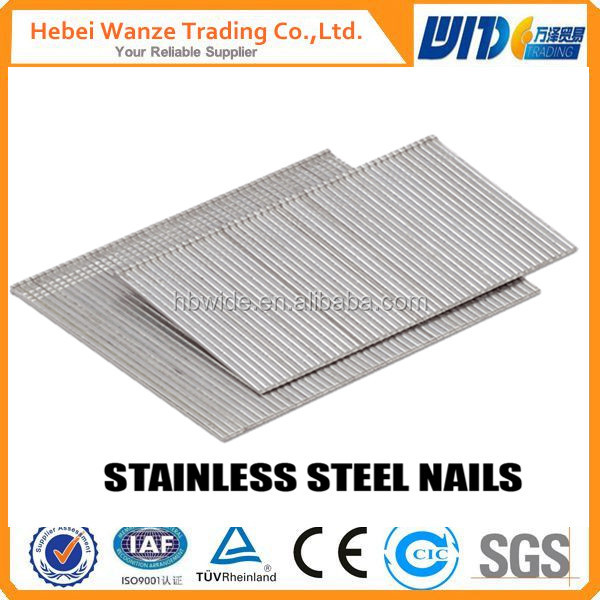 stainless steel coil nail/screw shank pallet coil nails/15 years factory