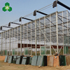 Bangladesh large fiberglass agricultural greenhouse for coconut seedling