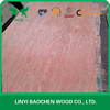 Low price for 2.5mm Packing grade plywood for Malaysia market