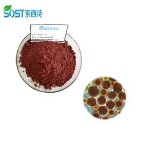 High Quality Water Soluble Pure Natural Astaxanthin Powder