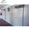 Cold room swing door, freezer cold room for Sri Lanka