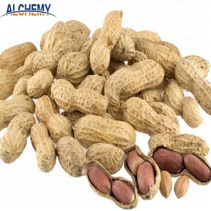 china origin wholesale roasted raw blanched peanuts