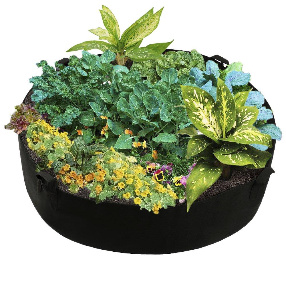 Cheap Raised Vegetable Garden Box Find Raised Vegetable Garden Box