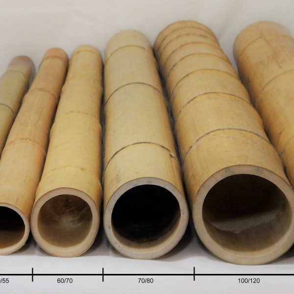 Giant MOSO bamboo poles for constructions