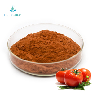 Food Grade Dehydrated Dried Tomato Extract Powder Bulk