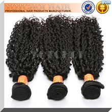 Hot seller full cuticle real mink brazilian hair afro kinky curly virgin hair , wholesale virgin brazilian hair bundles